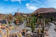 Jardín de Cactus